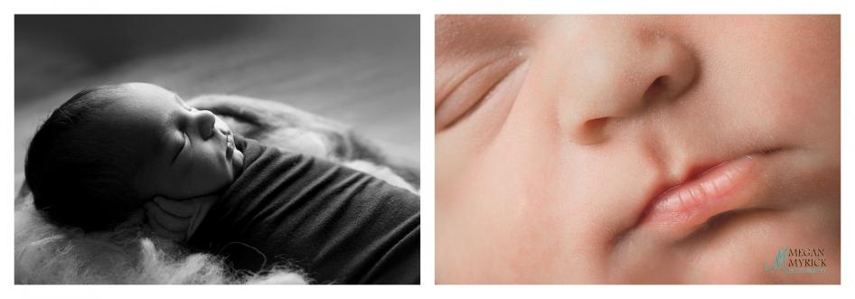 Four Legged Sibling|Richmond Hill Newborn Photographer|www.meganmyrickphotography.com